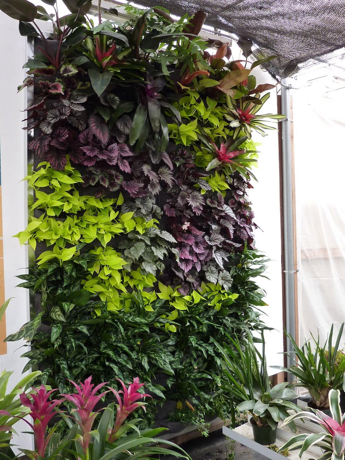 plants on walls florafelt vertical gardens. Black Bedroom Furniture Sets. Home Design Ideas