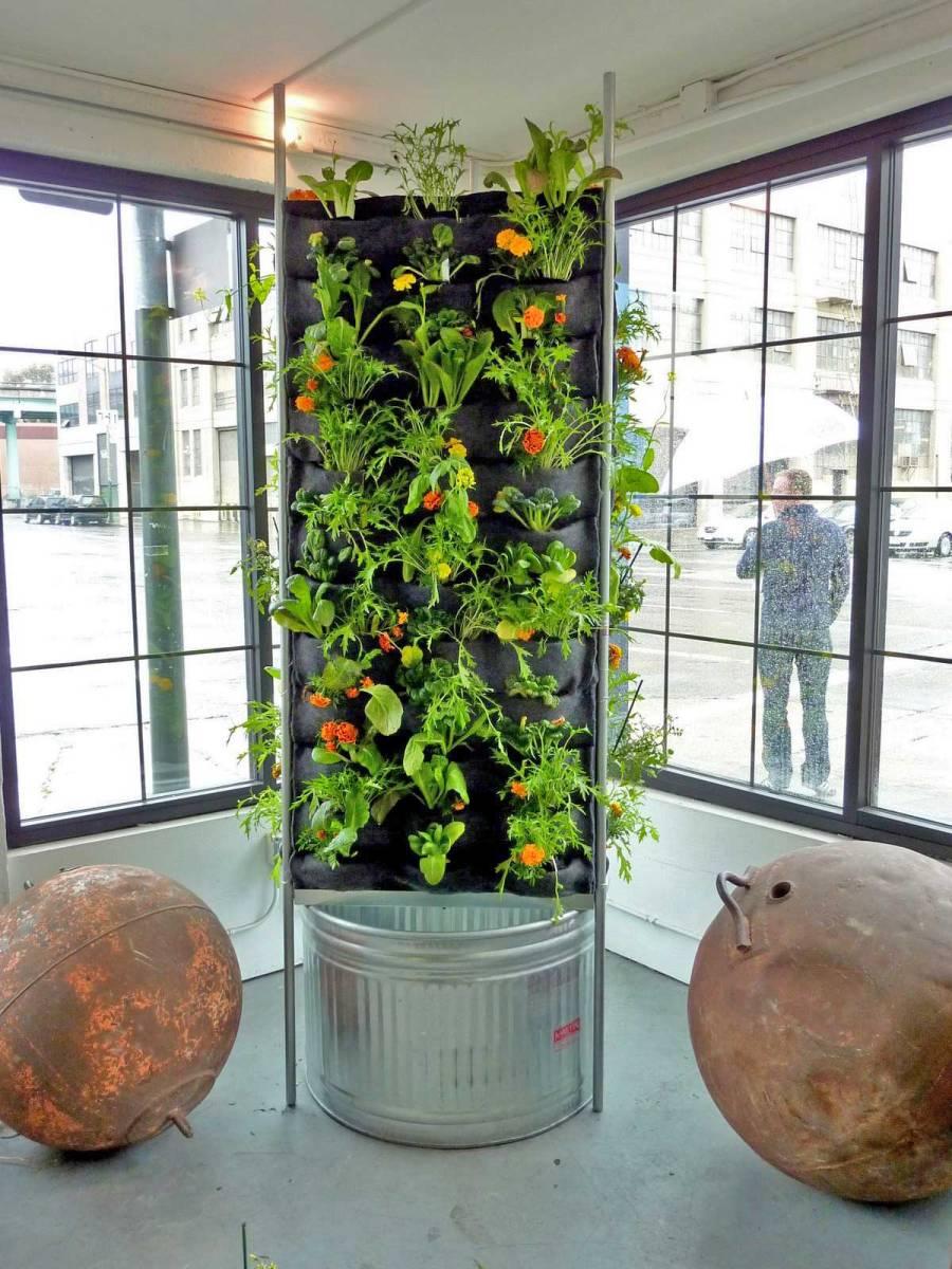 Plants On Walls Aquaponic Vertical Vegetable Garden