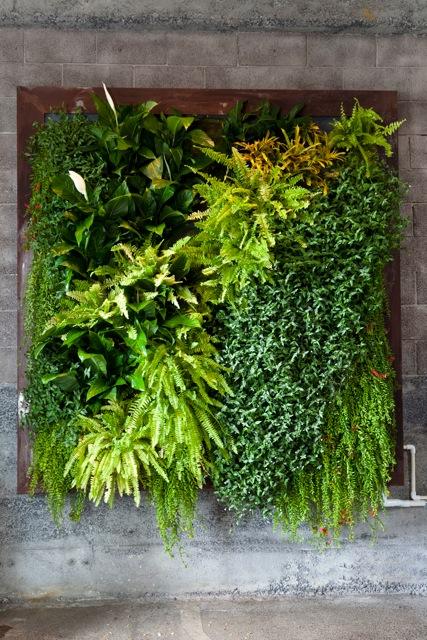 Plants on walls florafelt vertical gardens for Vertical garden panels