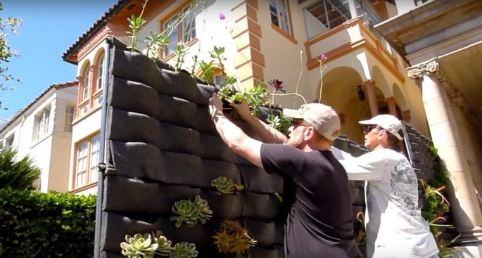 Davis Dalbok, Living Green Design. Chris Bribach, Plants On Walls. Decorator Showcase 2012. Florafelt Vertical Garden Planters.