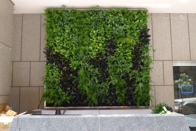 Chris Bribach, Plants On Walls. CBRE Installation. Florafelt Vertical Garden.