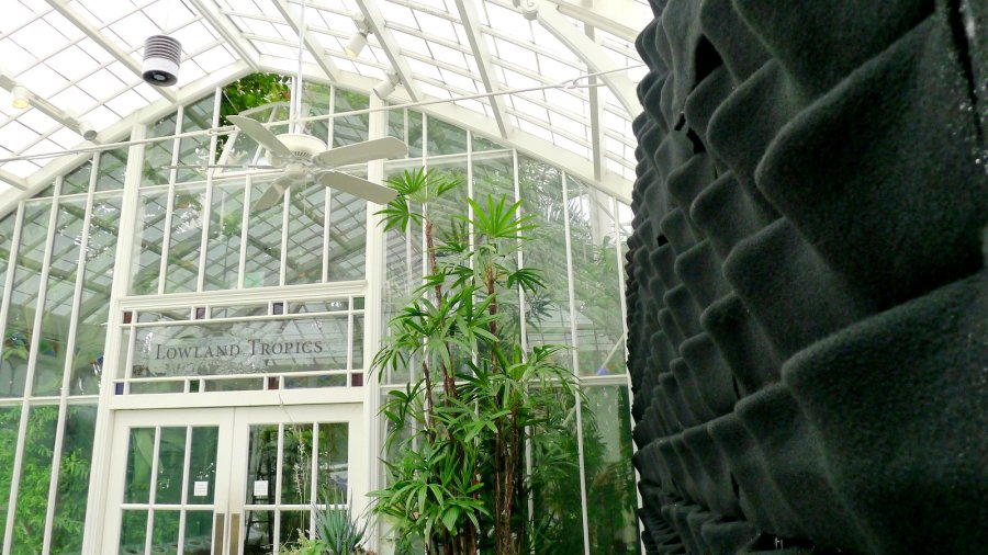 Chris Bribach, Plants On Walls. San Francisco Conservatory Of Flowers. Florafelt Vertical Garden Planters.