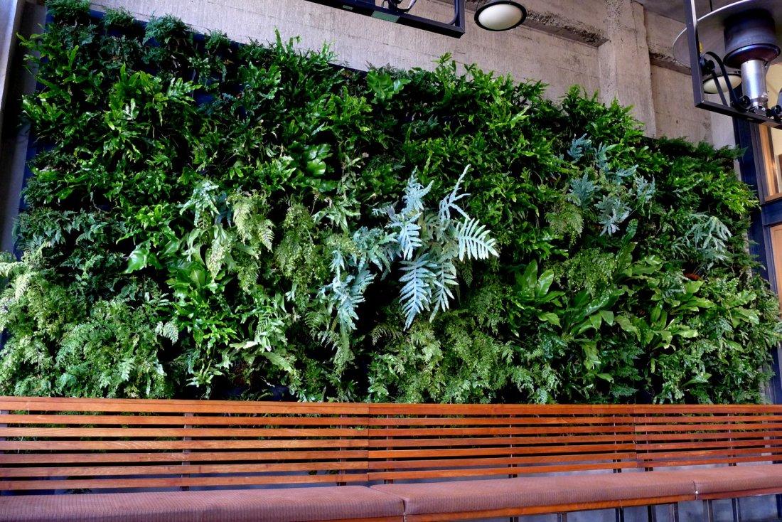Urban Bistro Vertical Garden by Chris Bribach, Plants On Walls. Florafelt System.
