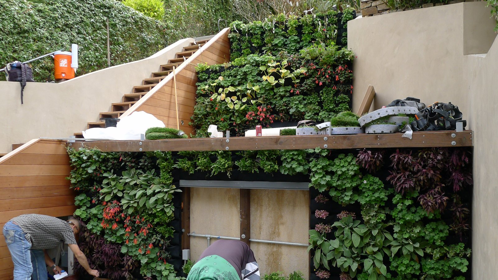 Terraced vertical garden for pacific heights home for Home vertical garden
