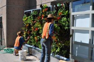 Florafelt Recirc Vertical Gardens. Conservation Garden Park Utah.