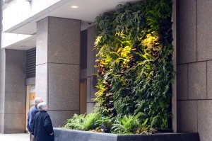 Florafelt Vertical Garden. Downtown San Francisco. Design: Chris Briabch