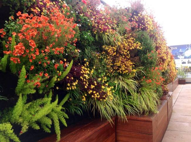 Florafelt Vertical Garden by Living Green San Francisco.