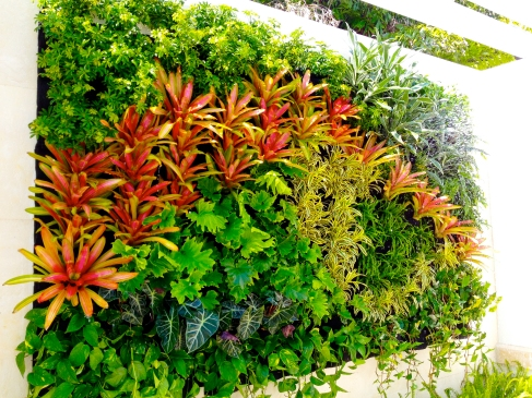 Florafelt Vertical Garden by Jeff Allis of Tru Vine Design.