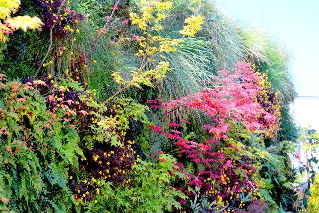 Florafelt Vertical Garden by Living Green San Francisco. Florafelt.com