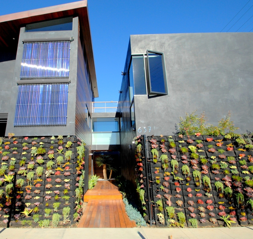 Florafelt vertical garden by Bella Casa, Venice Beach, California. Photo: Jeff Higginbotham