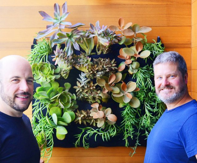 Florafelt 12-Pocket Vertical Garden Planted with Succulents by Chris Bribach, Plants On Walls.