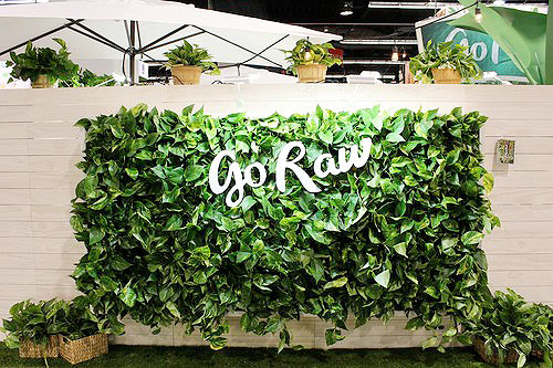 Pothos Vertical Garden for Go Raw by Amanda Goldberg Planted Design.