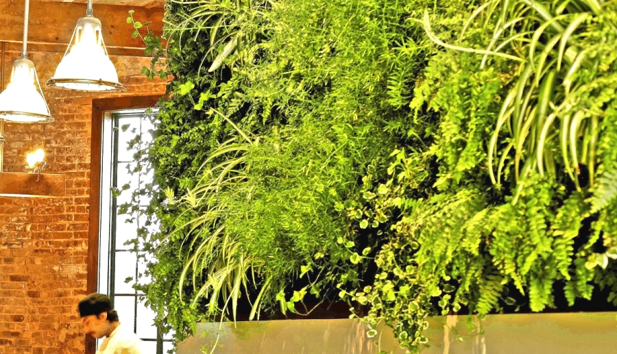 Florafelt Vertical Garden by FireDean Schilling, Woodland Landscapes at Atrium DUMBO, Brooklyn.