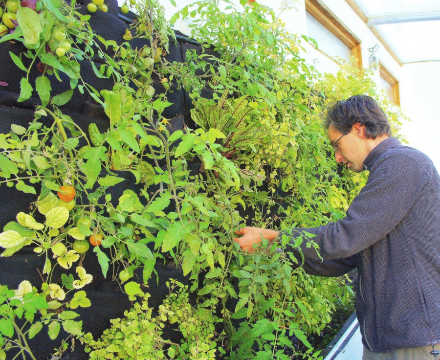 Florafelt Vertical Garden Aquaponics by Kate Humble, Humble by Nature UK.