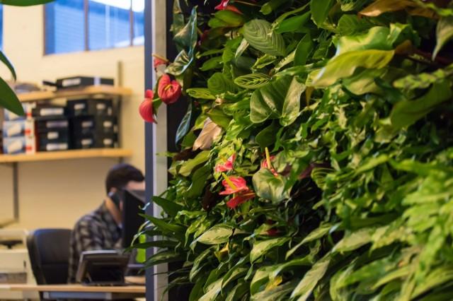 Florafelt Vertical Garden by Rebecca Sheedy, Floraform Design for Marx Foods, Seattle.