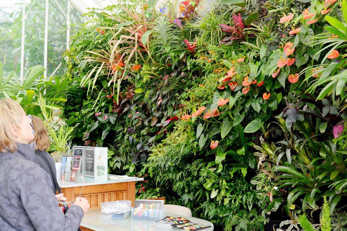 Florafelt Vertical Garden at the San Francisco Conservatory Of Flowers.
