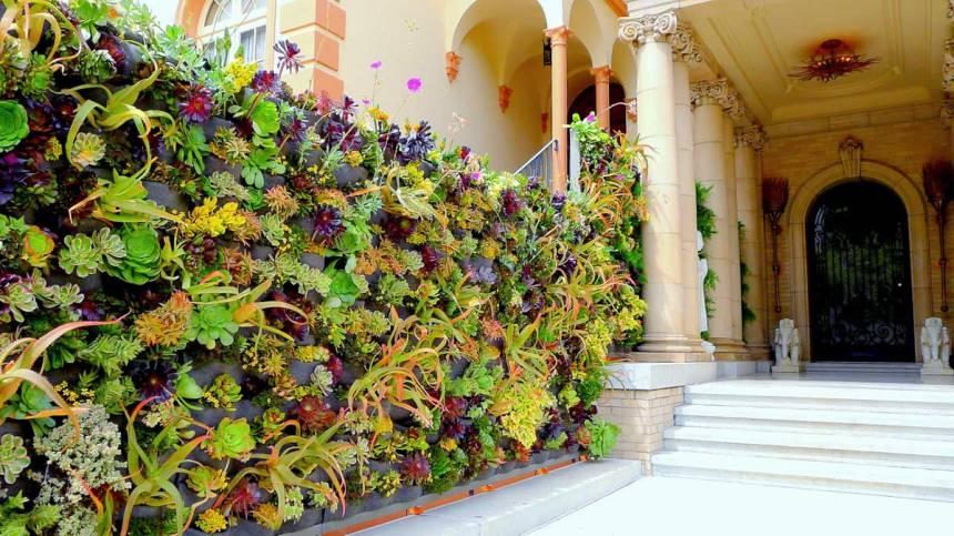 Florafelt vertical garden by davis dalbok living green design decorator showcase 2012