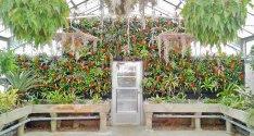 19e28-florafeltverticalgardenatkingwoodcentergardens