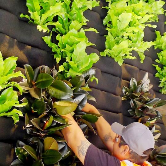 Florafelt Vertical Garden Installation