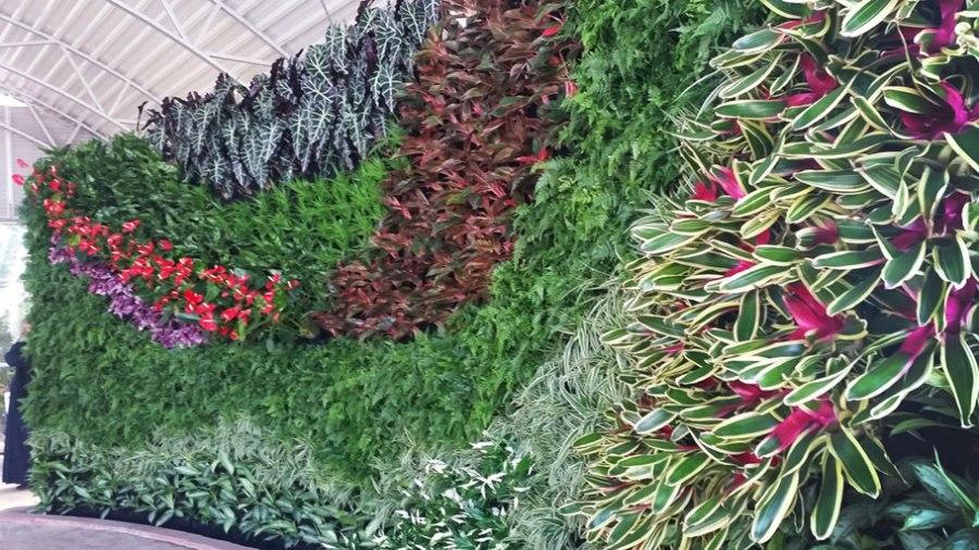 Florafelt Vertical Garden by Nawaf Al-Bash, Terra Garden for the Botanical Garden at Bayan Palace in Kuwait.