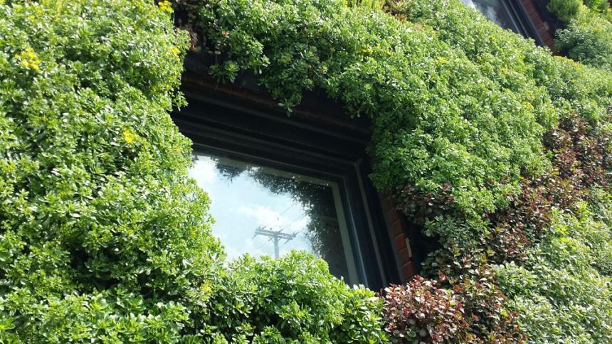 Hingetown Vertical Garden by Architect Marika-Shiroi Clark Cleveland 10