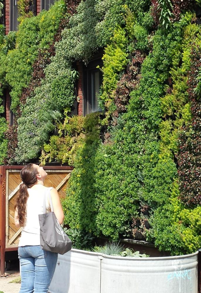 Hingetown Vertical Garden by Architect Marika-Shiroi Clark Cleveland 7