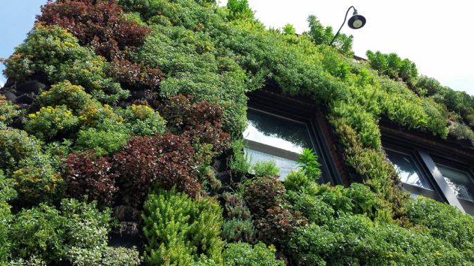 Hingetown Vertical Garden by Architect Marika-Shiroi Clark Cleveland 8