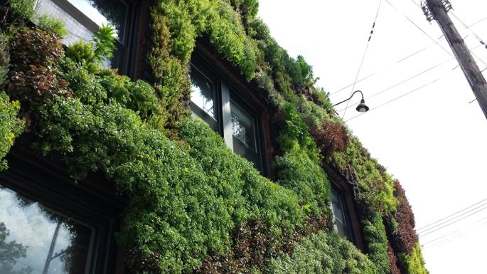 Hingetown Vertical Garden by Architect Marika-Shiroi Clark Cleveland 9
